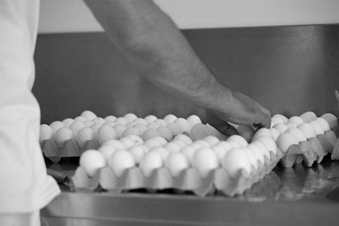Uova Pasta Carpanea